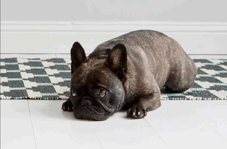 alfombra de plastico reversible
