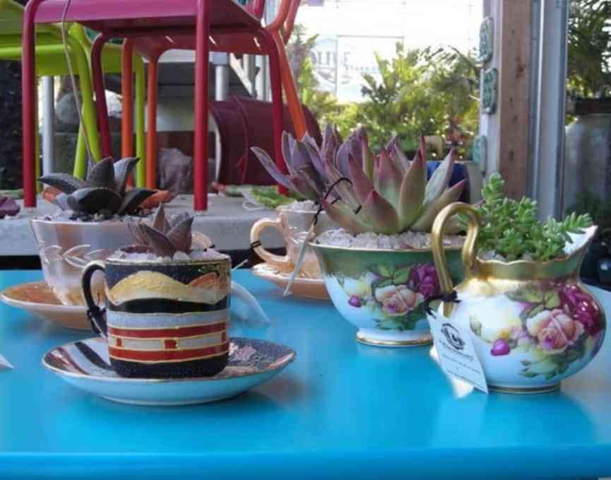 Tazas de té y azucareros con plantas