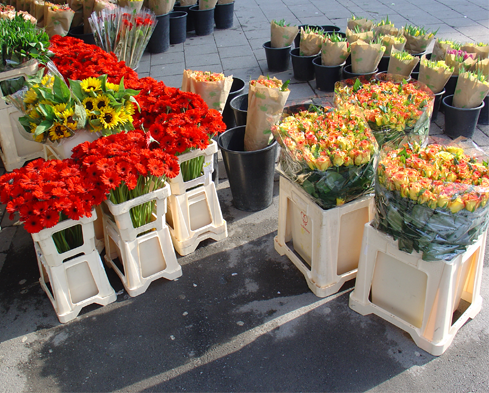 Bloemencontainer_flores en holanda