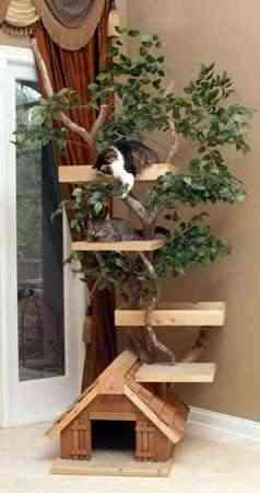 caseta arbol gatos Casa árbol para gatos