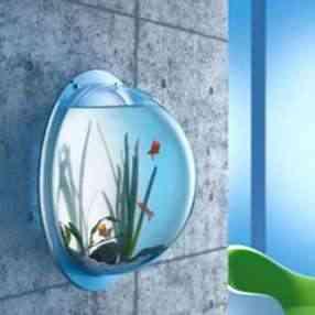 Mi acuario de pared elegancia - Pecera de pared ...