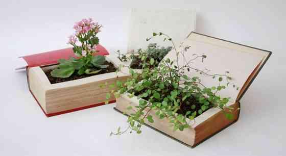 abre tu libro y será una maceta para tus flores y plantas