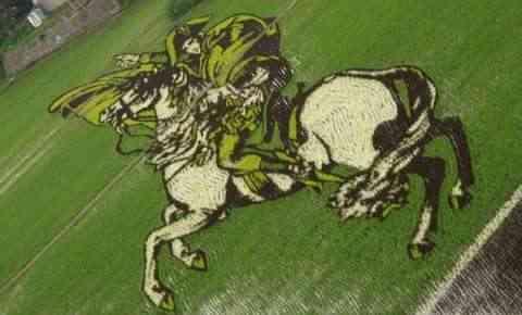 Decorando campos de arroz Napoleon
