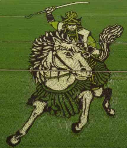 Decorando campos de arroz figura guerrero