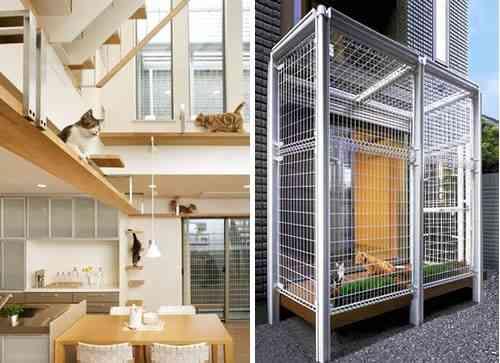Una vida de perros - Casa gatos exterior ...