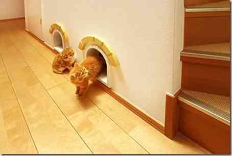 decoracion casas de mascotas-4
