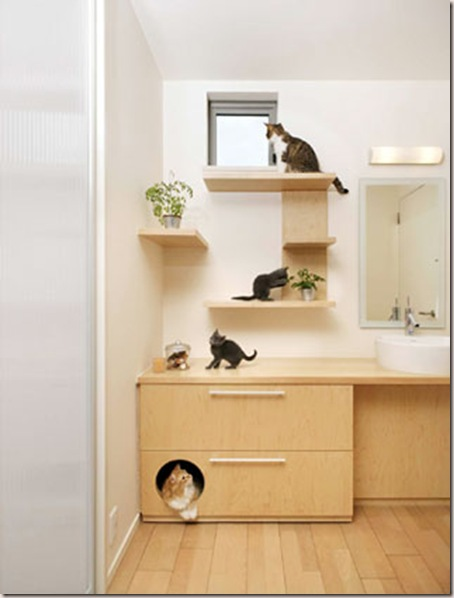 decoracion casas de mascotas-9