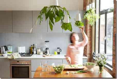 mobiliario vegetal-10