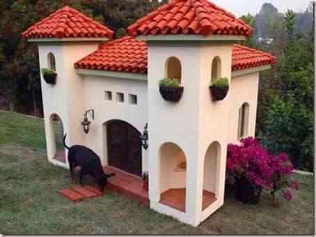 casa-perro-moderna-10