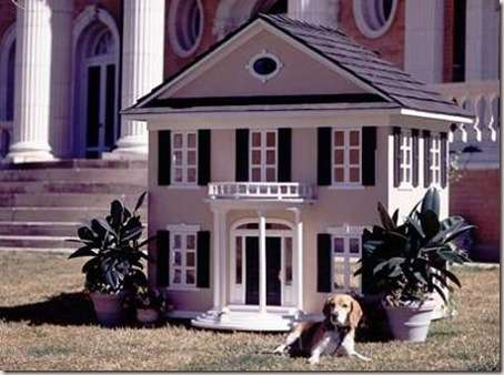 casa-perro-moderna-11