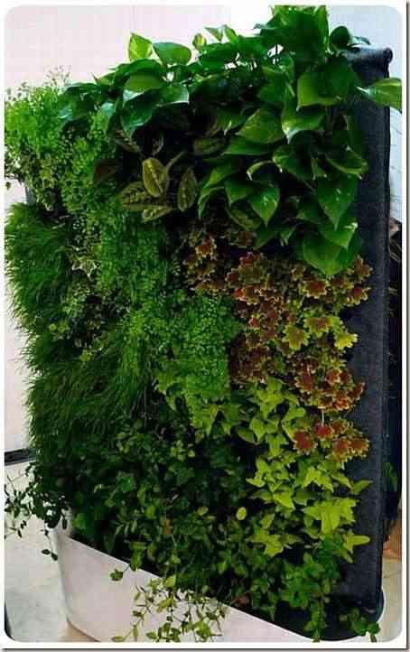interior gardens-8