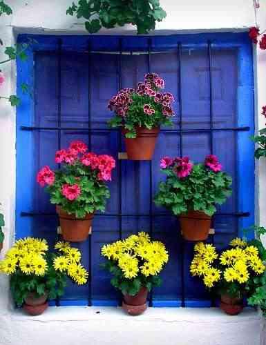 macetas para tu ventana