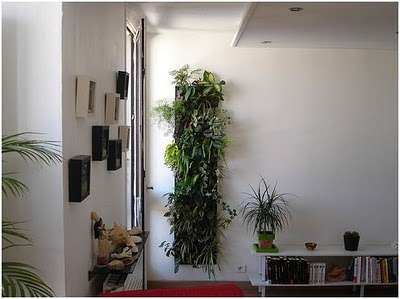 decoracion vegetal-4