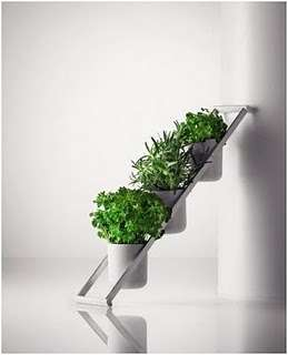 decoracion vegetal-5