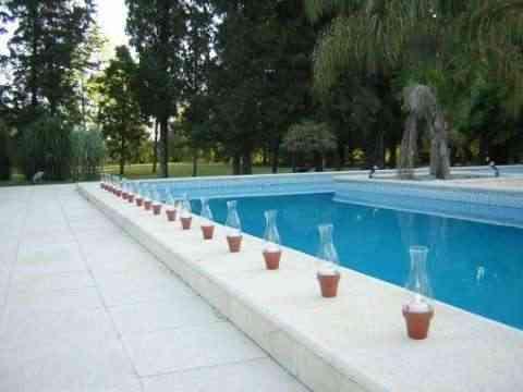 Nadando en la decoraci n for Decoracion de piscinas