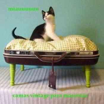 Cama vintage para gatos: decorando el rincón de nuestra mascota