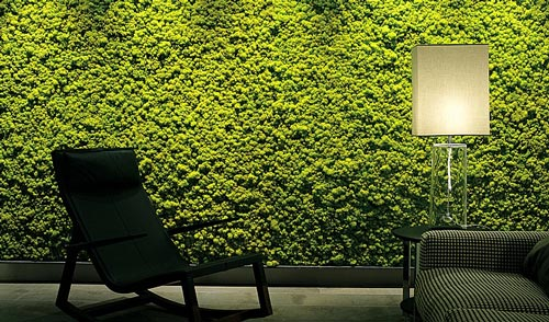 Implementa lo verde en tus paredes Murales decorativos para exteriores