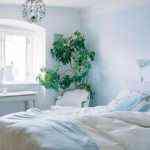 decorar_con_plantas_3