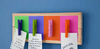 organizador de notas