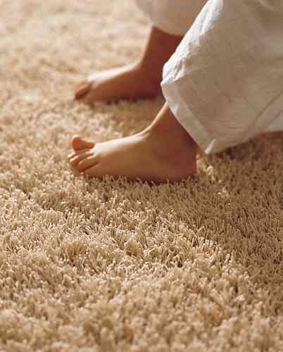 Resultat d'imatges de pie en alfombra suave