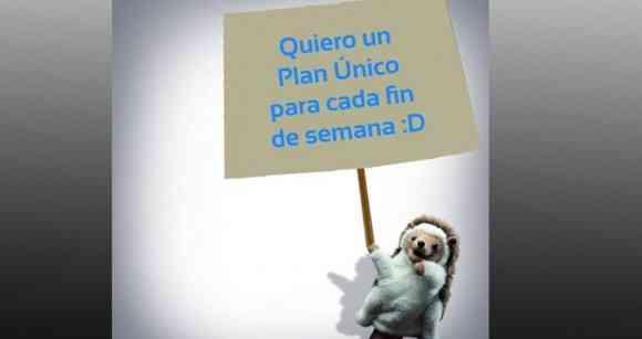 plan unico genesis
