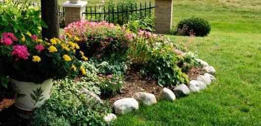 crea tu jardin con lidl