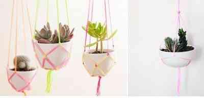 plantas-colgadas-1