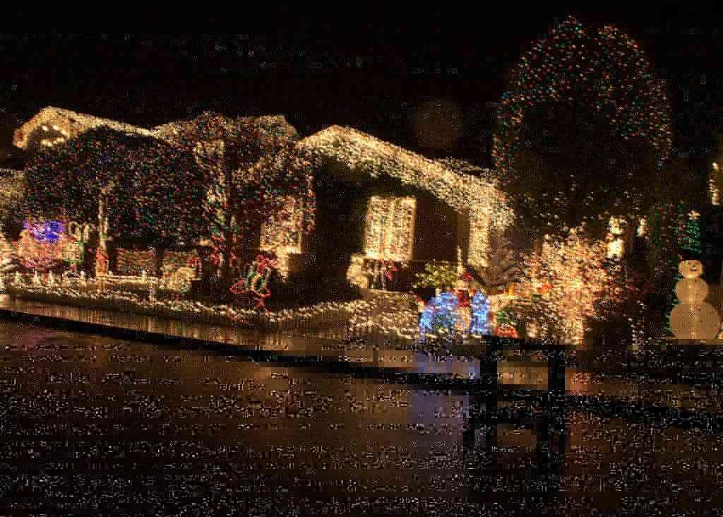 luces de Navidad 14