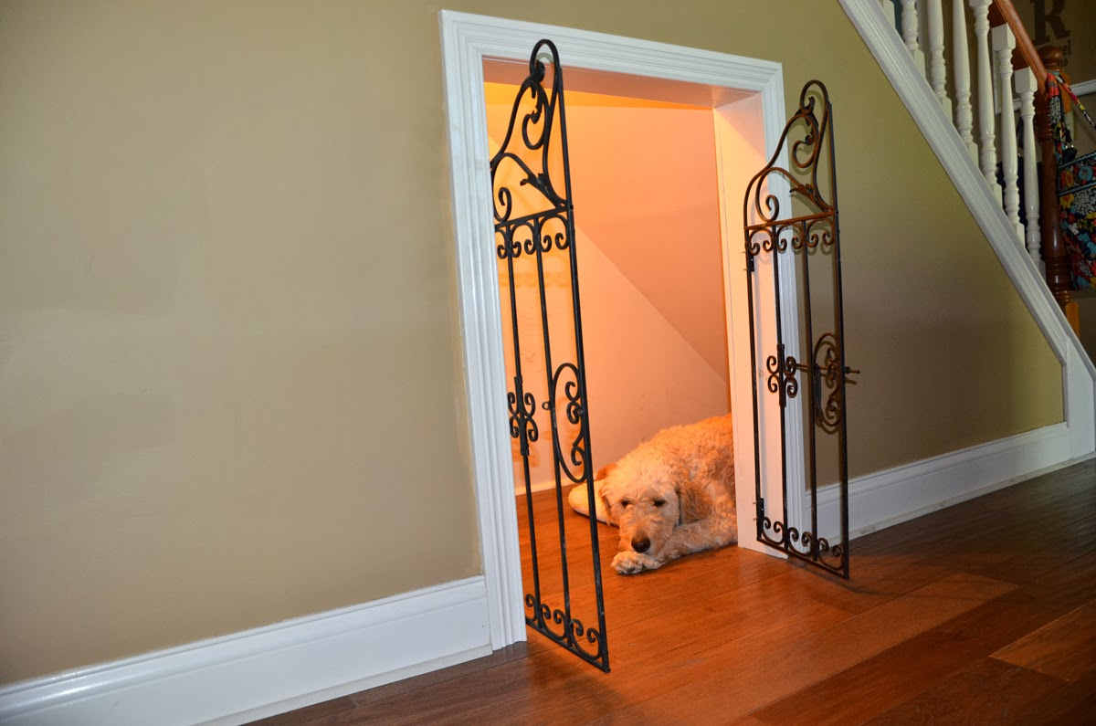 rincon perro