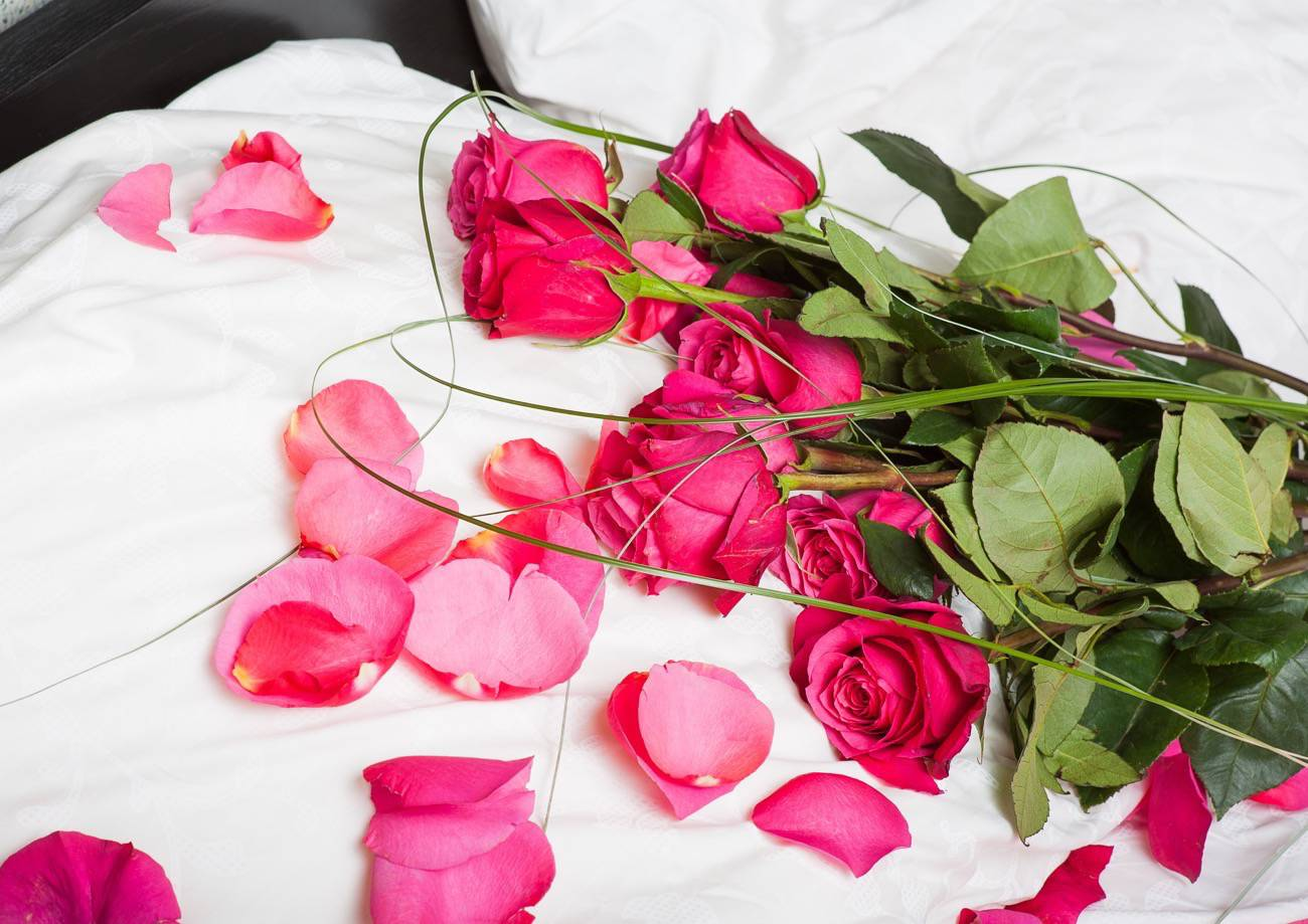 flowers - pink roses on a white pillow