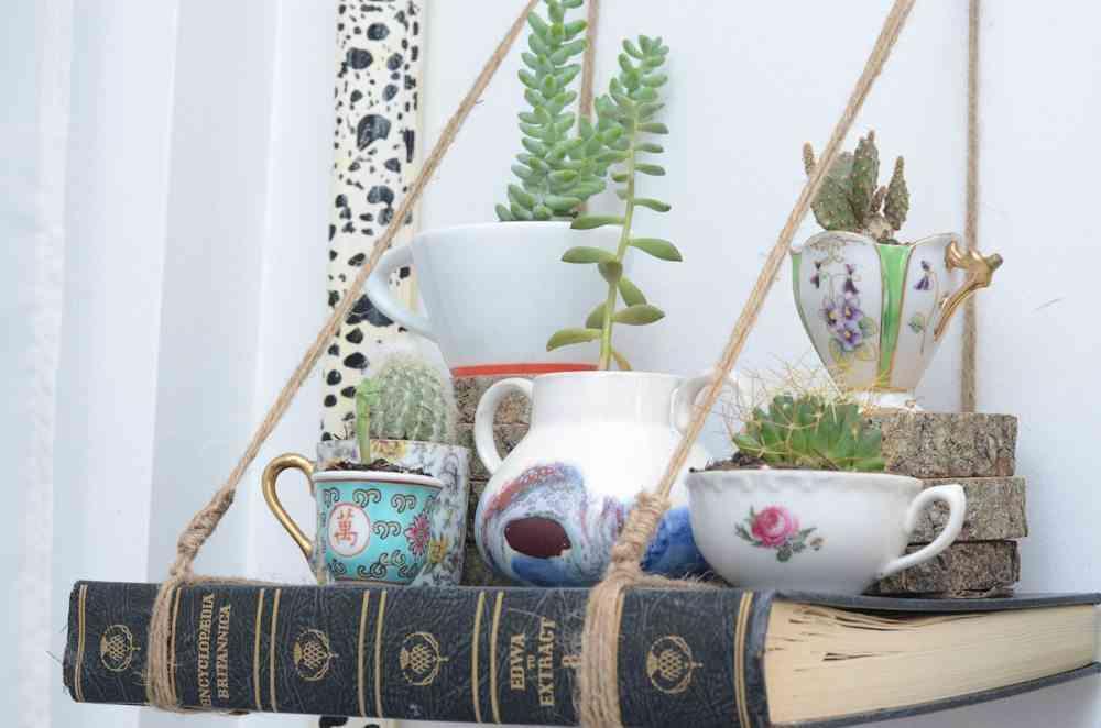 Libro estantería para sujetar un mini jardín en casa