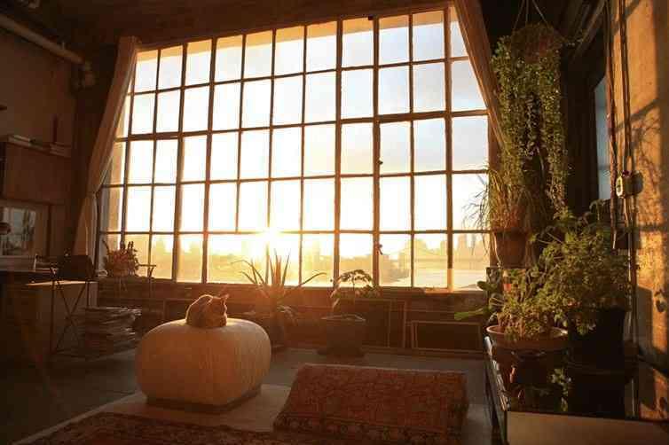 sencilla habitación con mucha luz natural y plantas