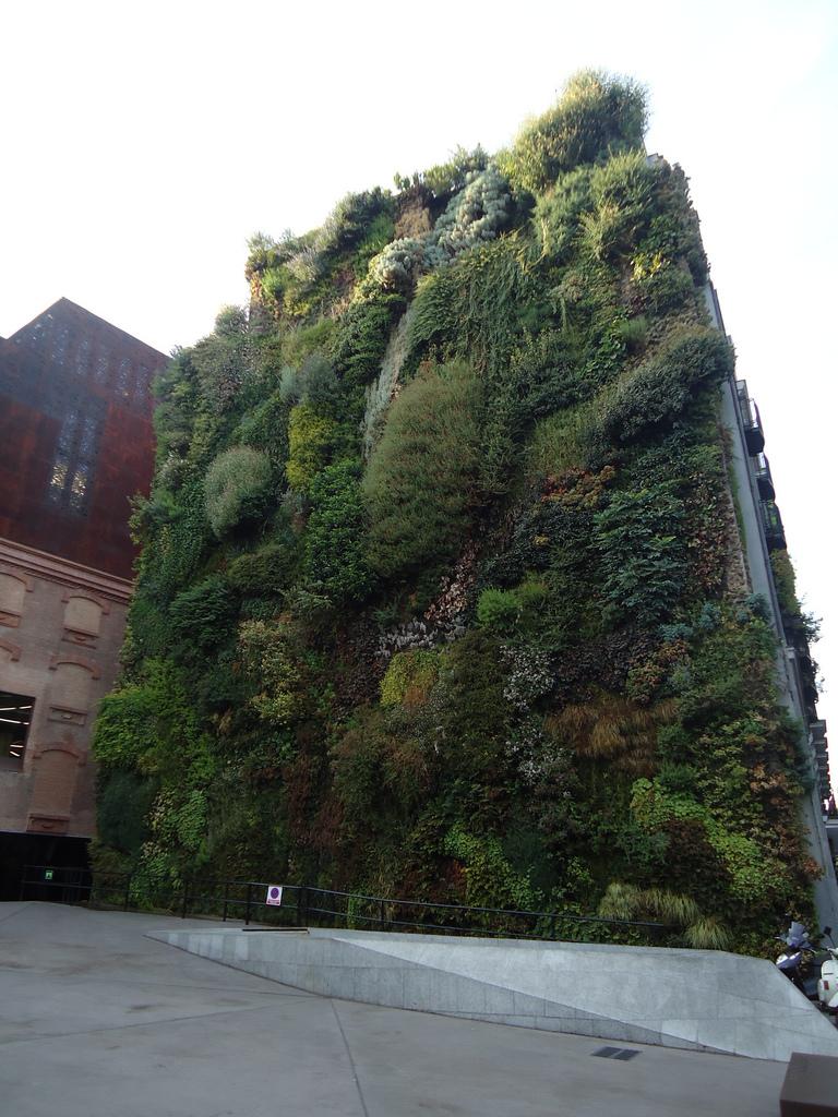 jardines verticales caseros - edificio