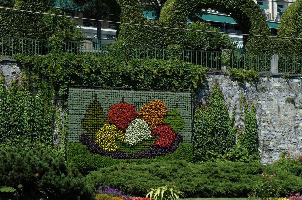 jardines verticales caseros - muro de flores
