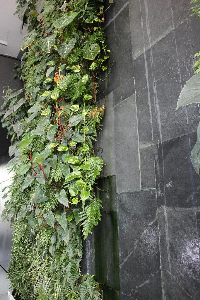 jardines verticales caseros - jardin en el baño