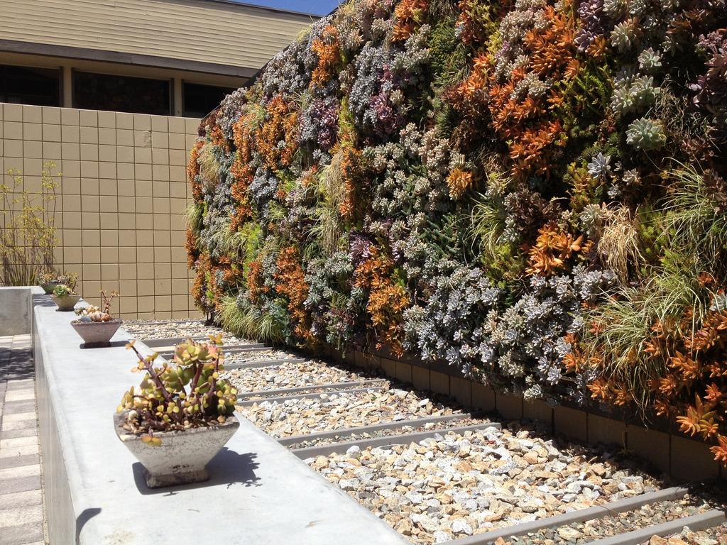 jardines verticales caseros - muro