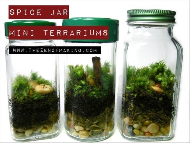 utilizar tarros de cristal - terrarios en un jarrón