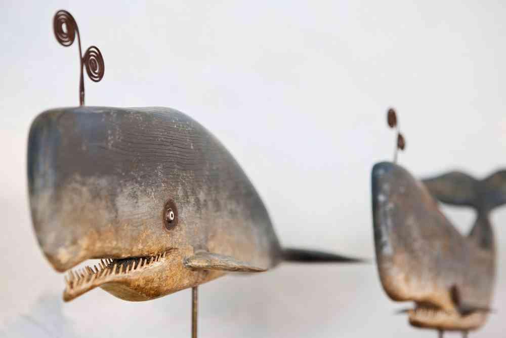 objetos de diseño cachalote de javier lorenzo