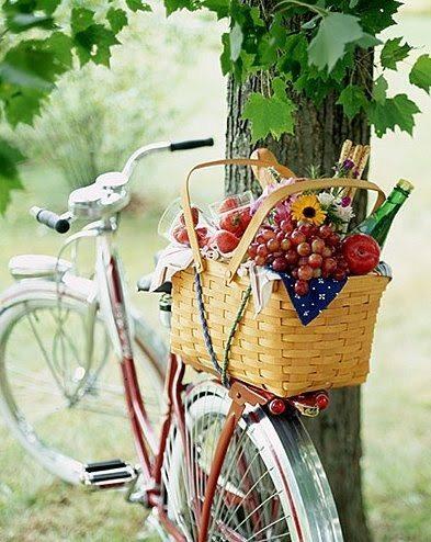 bicicleta y picnic