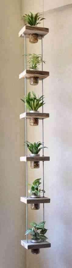 Crea tu propio jardín aéreo interior