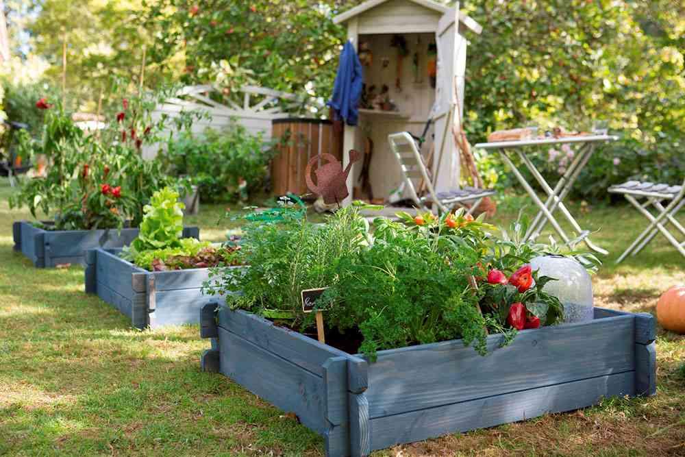 Claves para poner a punto tu jard n en primavera - Punto jardin ...