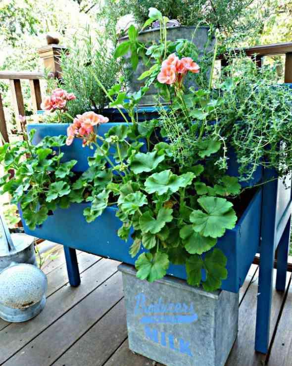 muebles con color jardinera azul plantas