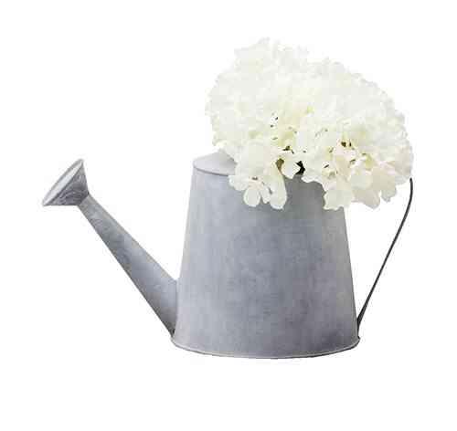 complementos rústicos muy mucho regadera y flores blancas
