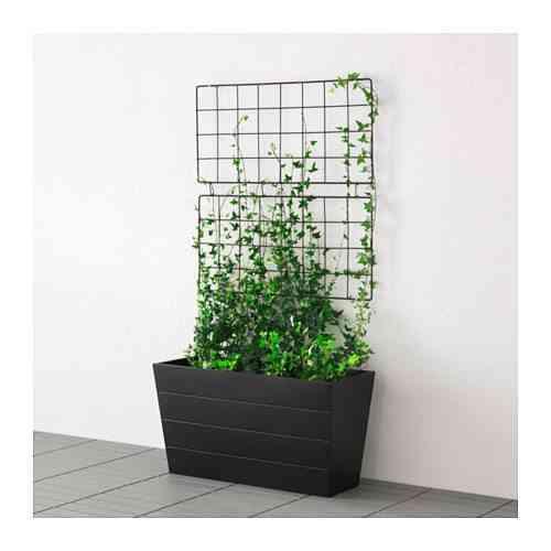 decorar terraza con plantas