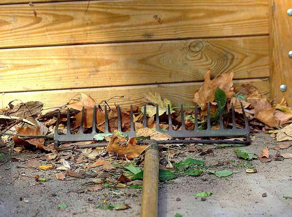 jardin en otono manuel rastrillo