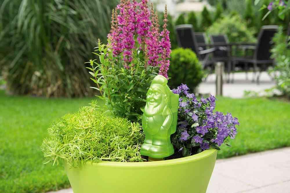 preparar el jardin macetero verde