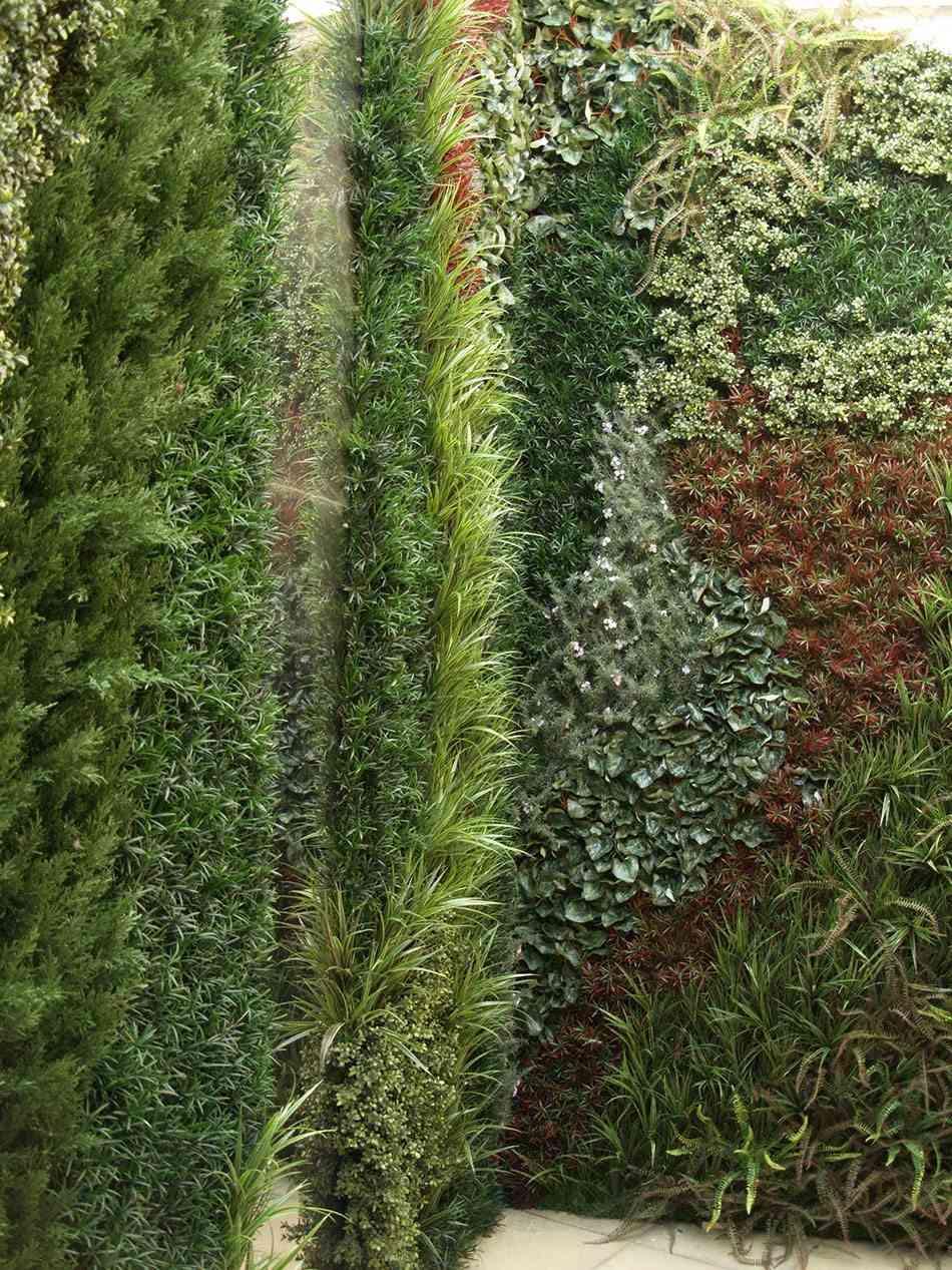 preparar el jardín paredes verdes