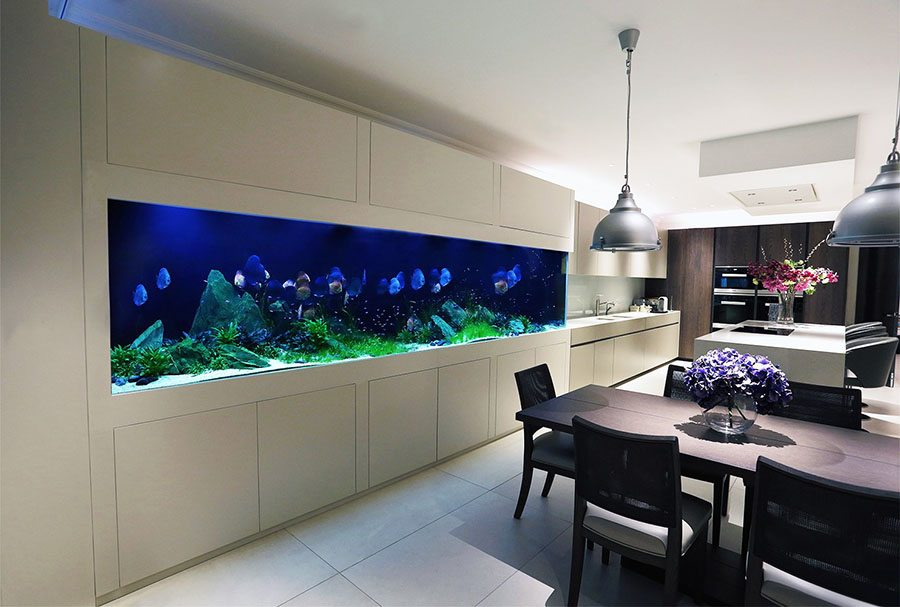 decorar con acuarios aquarium architecture pared