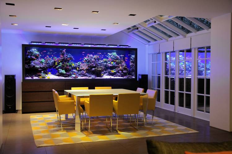 decorar con acuarios aquariumarchitecture