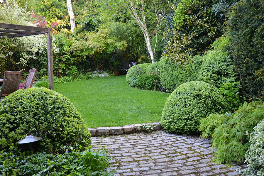 5 ideas para plantear y decorar jardines peque os for Decoracion de arboles de jardin